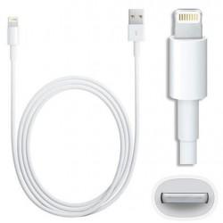 Cable de charge USB Lightning iPhone - 2 mètres
